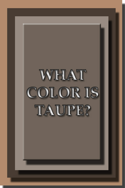 What Color Is Ta Taupe